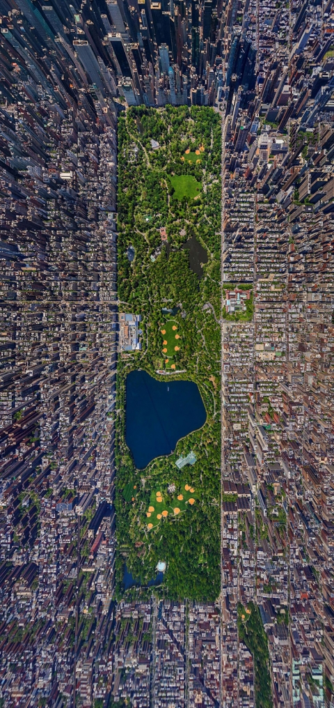 Aerial-view-of-nbsp-NYC-Central-Park.img_assist_custom-480x1016